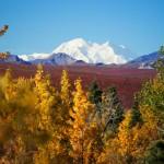 Alaska Explorer Tour
